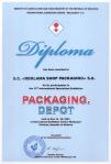 Diploma PACKAGING DEPOT MOLDEXPO Chisinau (1)